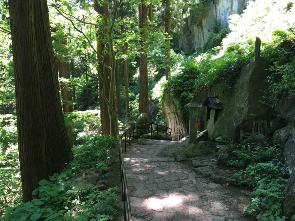 yamadera_forest